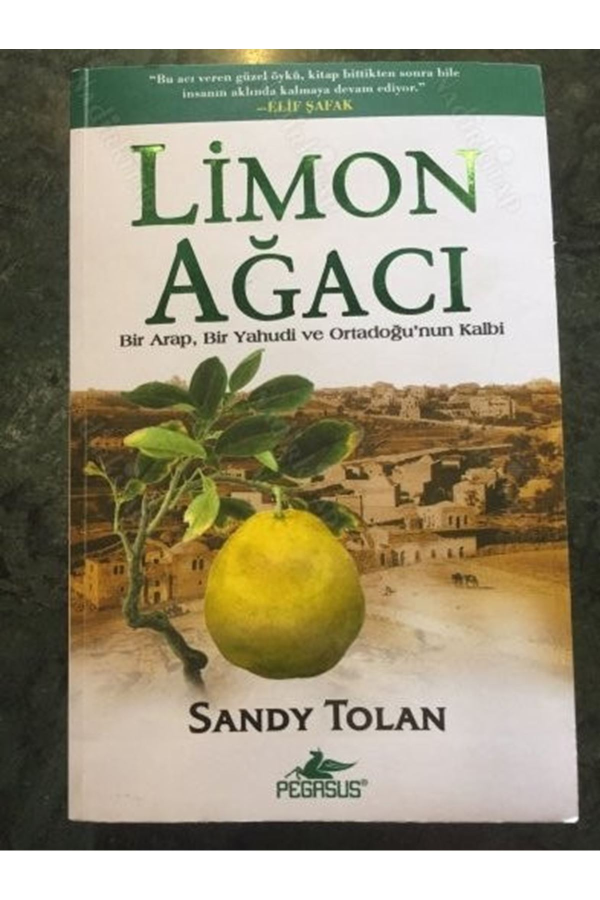 SANDY TOLAN - LİMON AĞACI