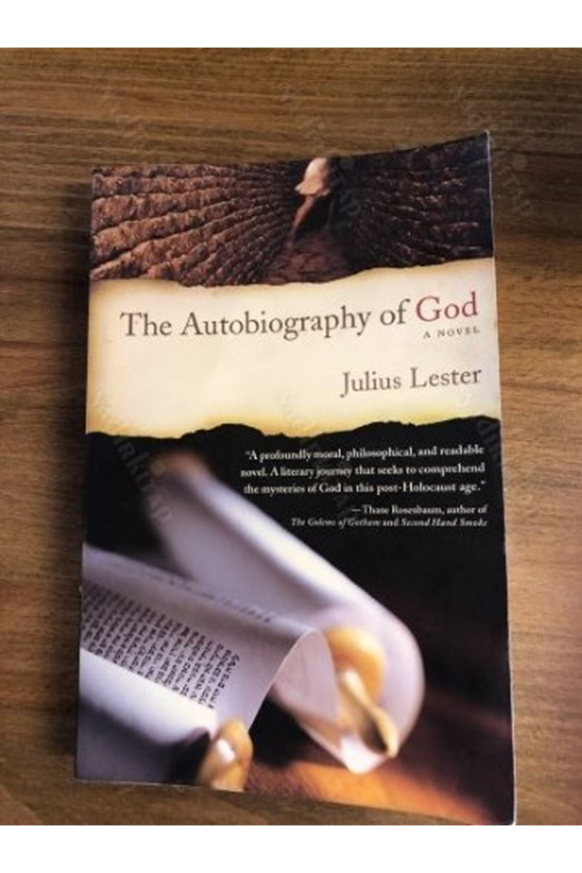 JULİUS LESTER - THE AUTOBİOGRAPHY OF GOD