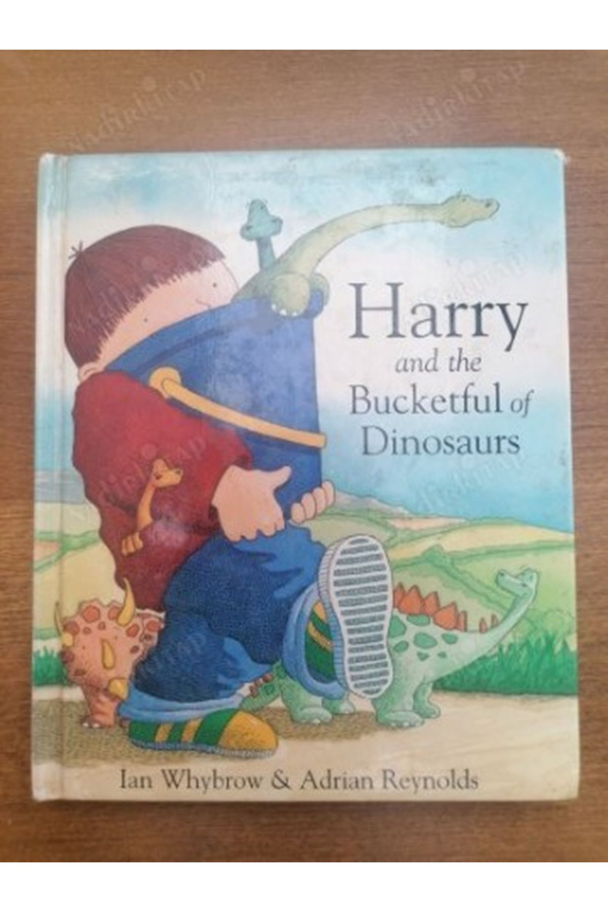 LAN WHYBROW - HARRY AND THE BUCKETFUL OF DİNOSAURS